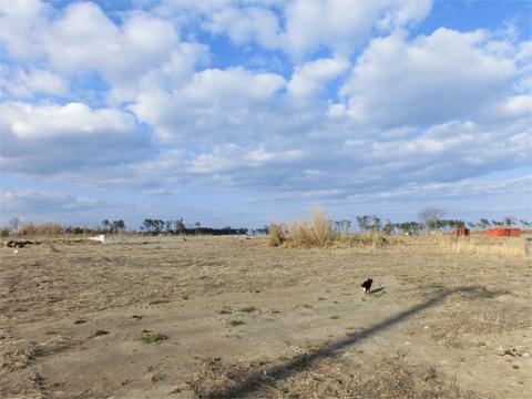 岩沼11.jpg