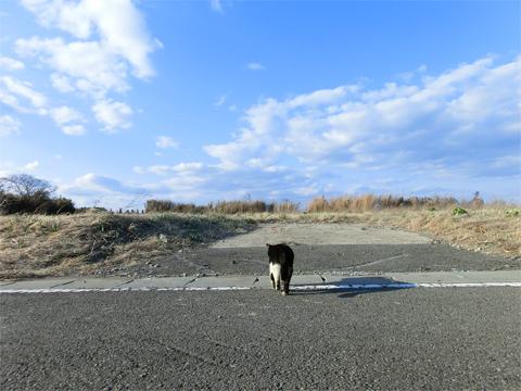 岩沼30.jpg