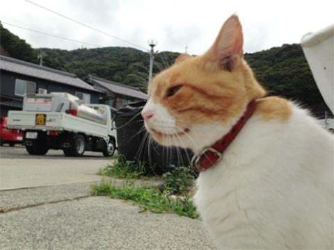 敦賀03.jpg