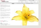 植物と園芸の写真素材サイト