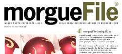 フリー(無料)写真素材ダウンロードサイトMorguefile