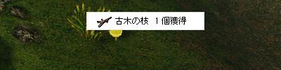 140609_01.jpg