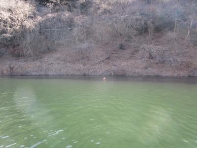 20190126梅田湖06(荒らされたポイント3)
