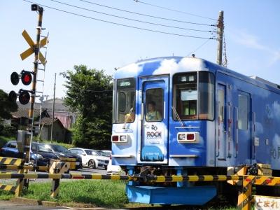 20190804那珂湊港17(ひたちなか海兵鉄道)
