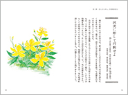 1805_孫子_本文