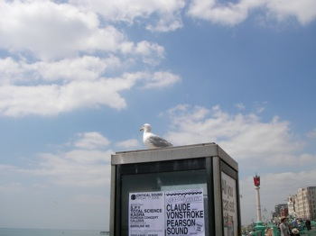 Brighton  Lewes ブライトン ルイス