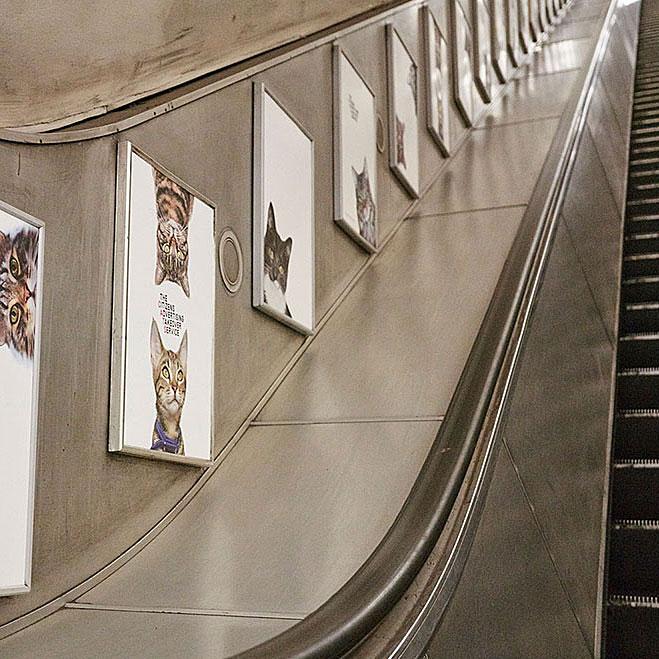 クラパムコモン駅 ねこ 地下鉄のねこ