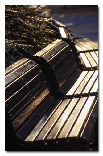 夕陽に輝くベンチ