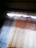 20060617_116582.jpg