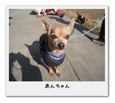 an-chan