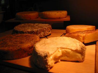 formaggio da sasino