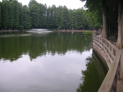 別所沼公園(さいたま市)