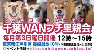 千葉WANイベント情報ブログへ