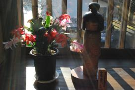 kokeshi in a morning