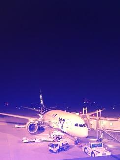 sunrise izumo - ana 787