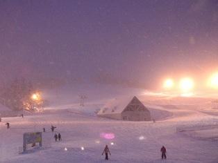 ski in kiroro