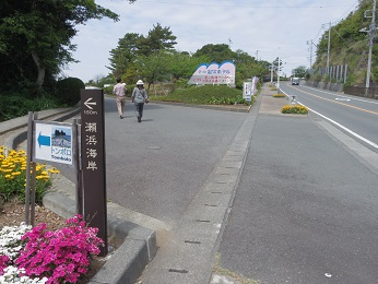 IMGP3606.JPG