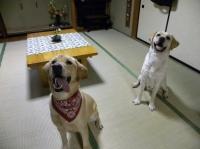 ふたりのこんな笑顔を見れて幸せです☆