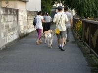 みんなでお散歩に行きました♪
