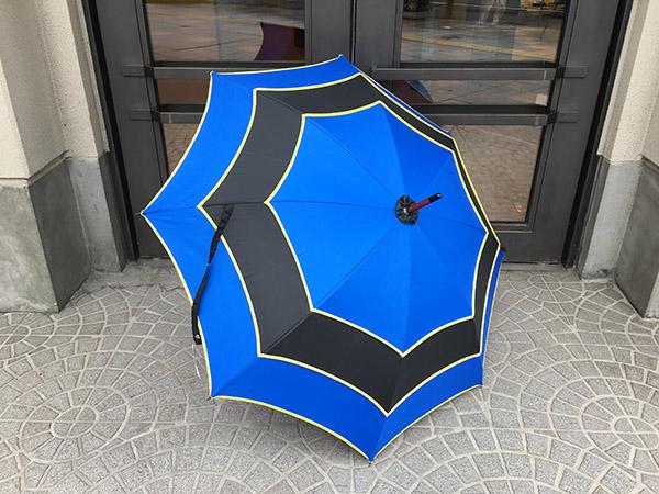 sauvagnat 傘 ブルー.jpg
