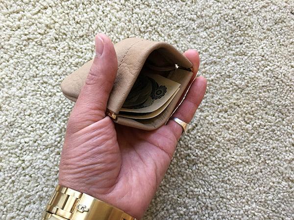 エンダースキーマ coin purse m.jpg