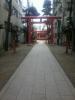 花園20100201