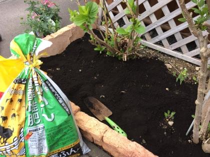 物置前小庭 肥料混ぜ合わせ170513.JPG