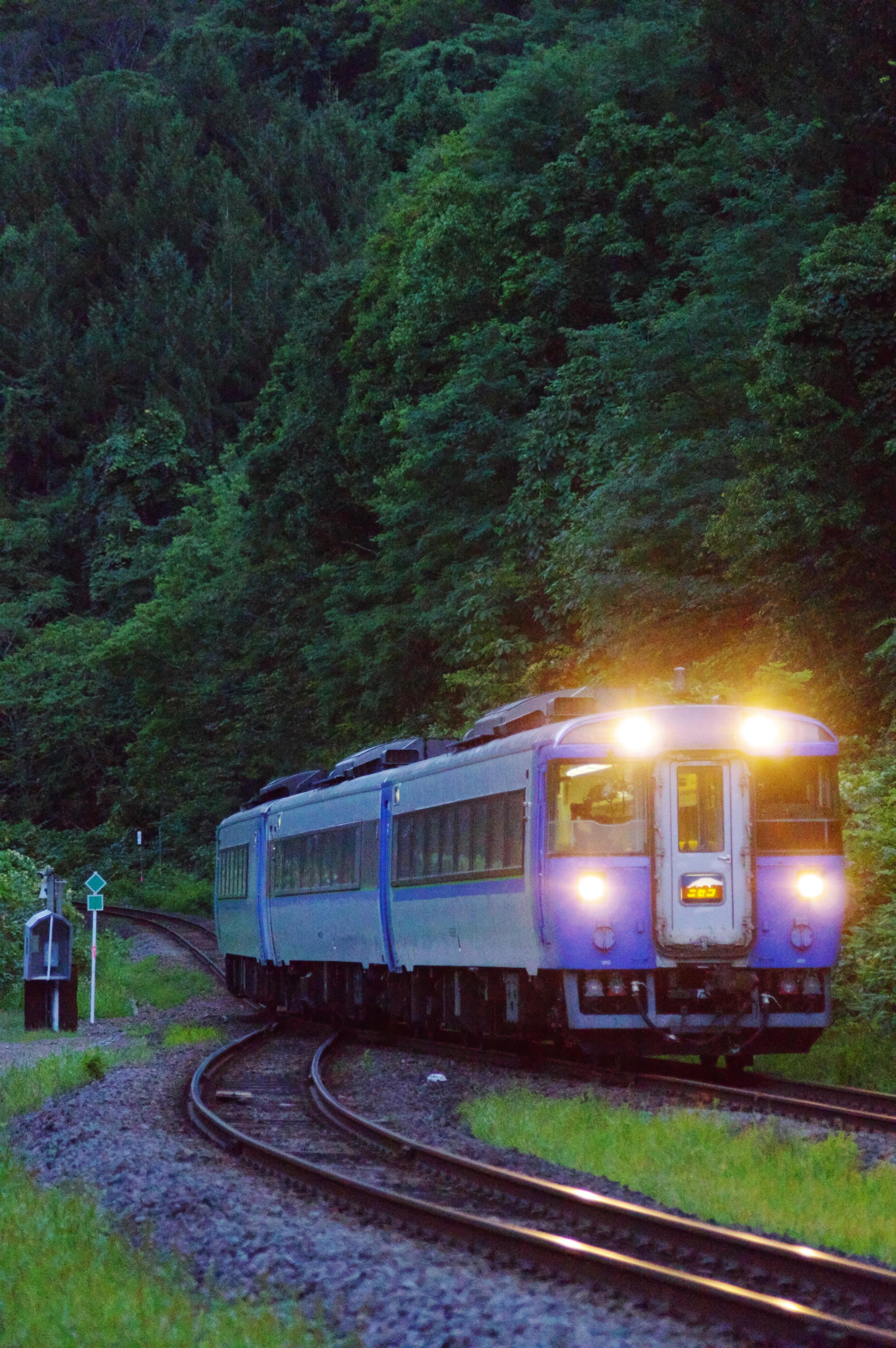 180902 銀山駅入線 特急ニセコ.jpg