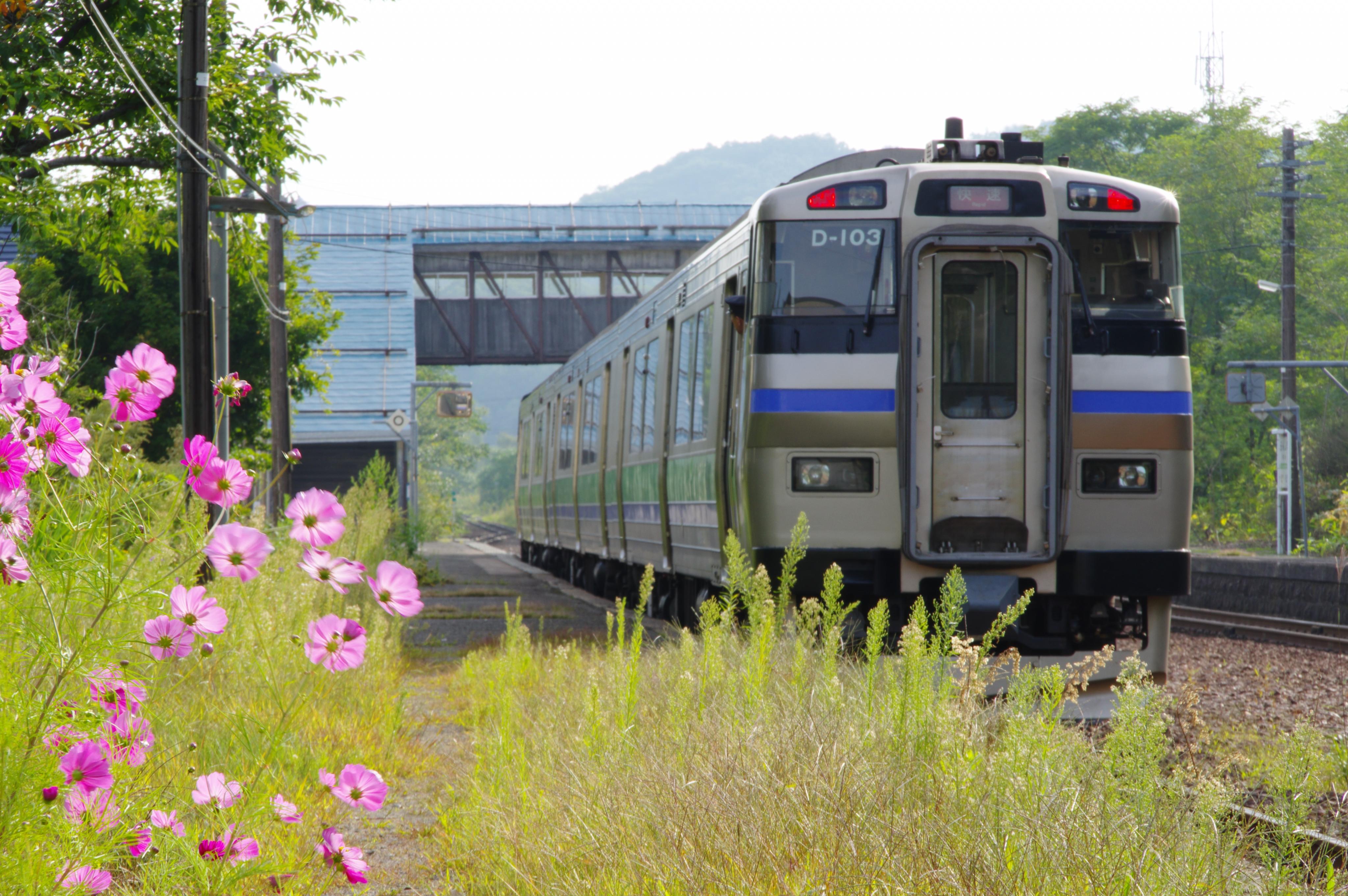 190916 快速ニセコライナー 蘭島駅.jpg