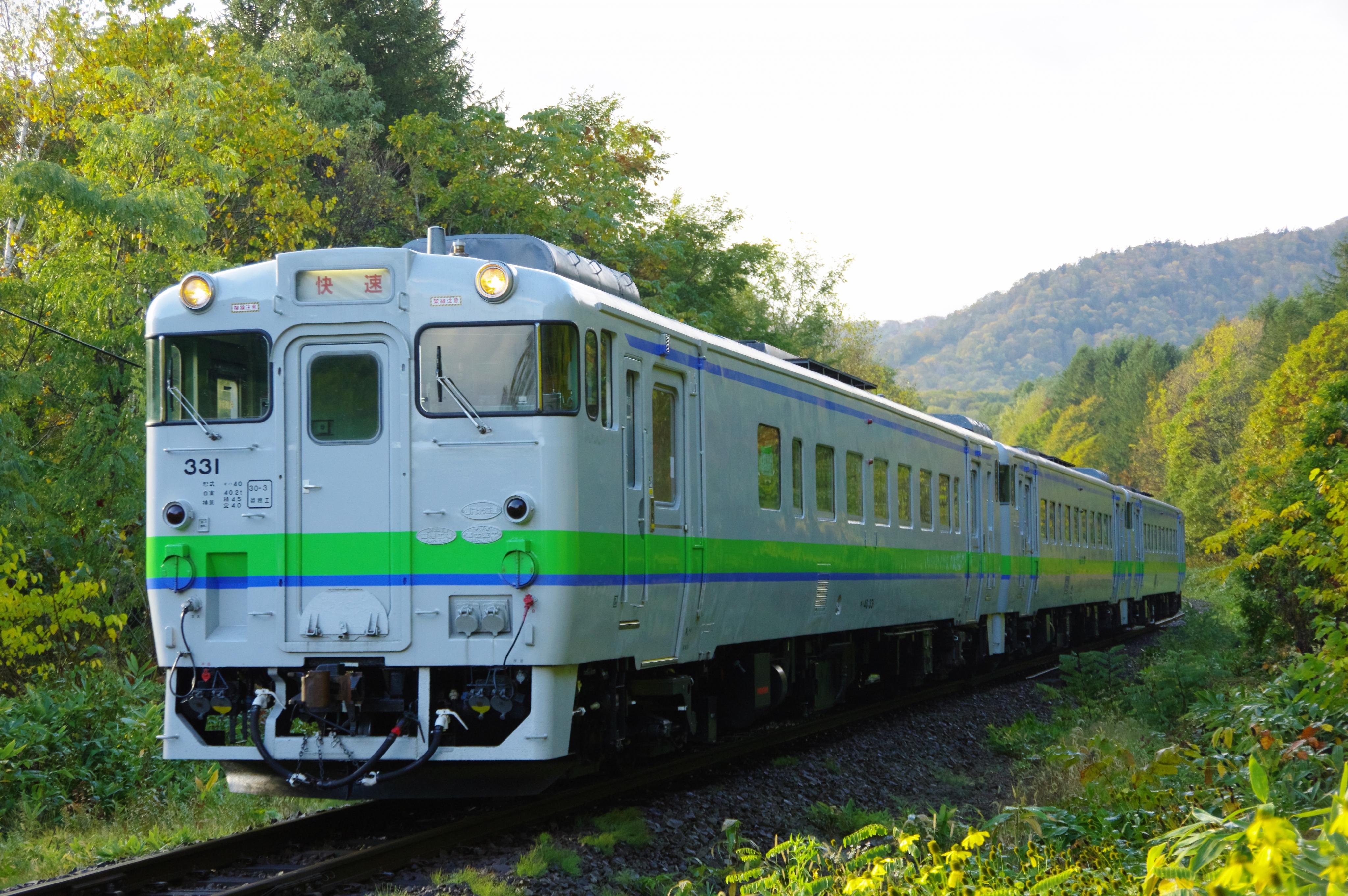 キハ40 3両編成 代走3925D 快速ニセコライナー_181017.jpg