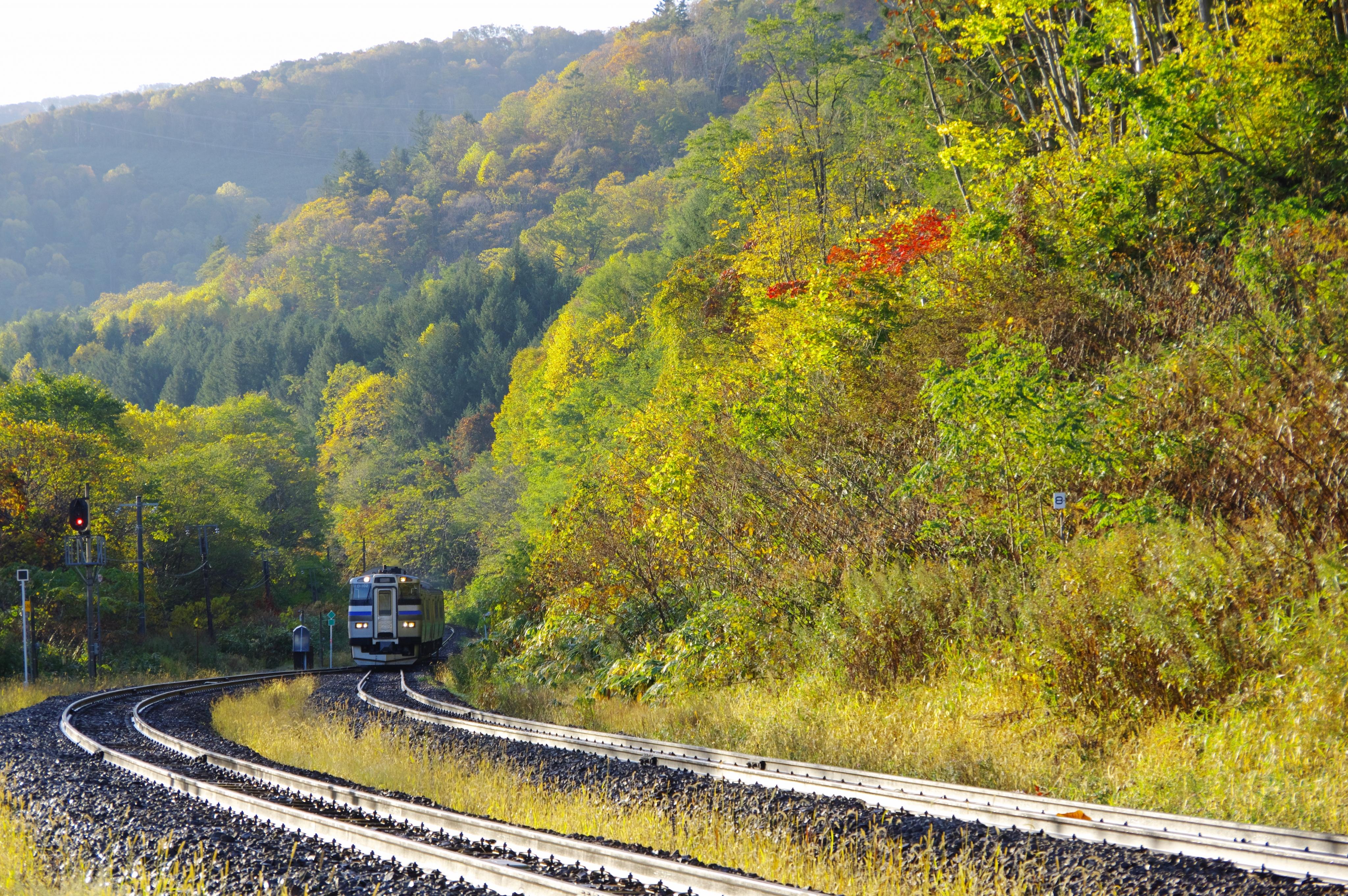 キハ201系 3925D 快速ニセコライナー 銀山駅 181021.jpg