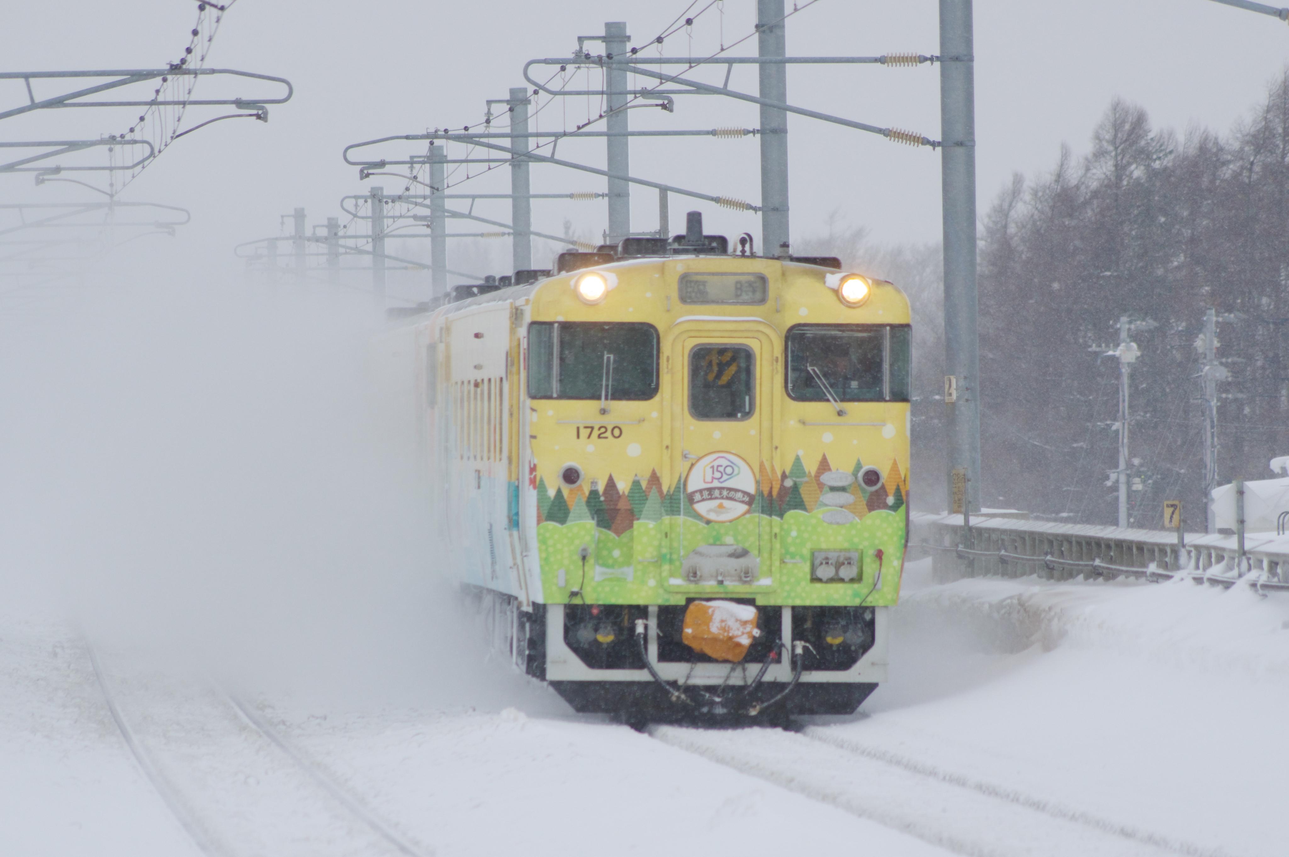 キハ40 団臨 元気です 夕張号 野幌駅_190202 (2).jpg