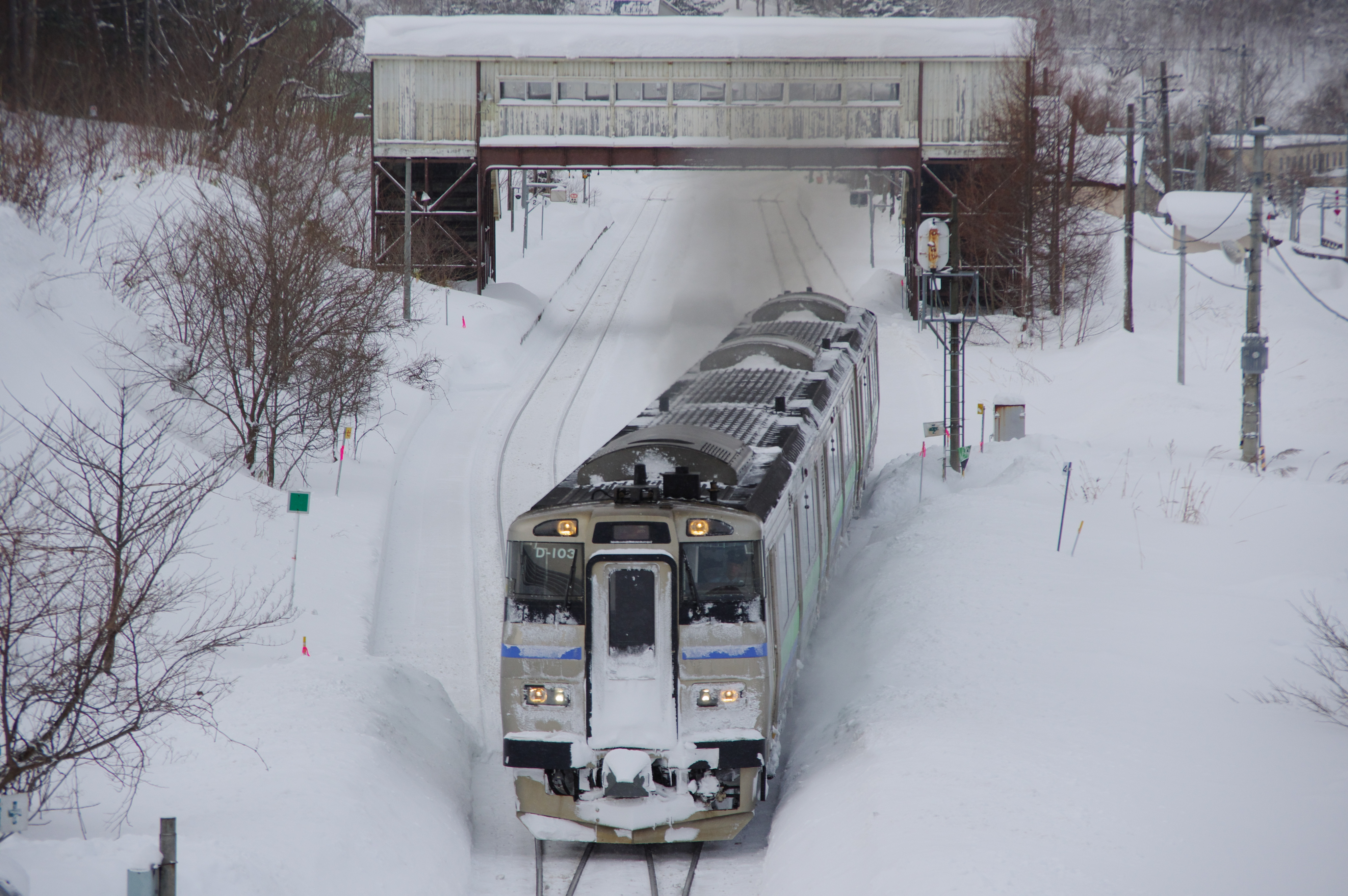 塩谷駅 3925D 快速ニセコライナー_190209 (3).jpg