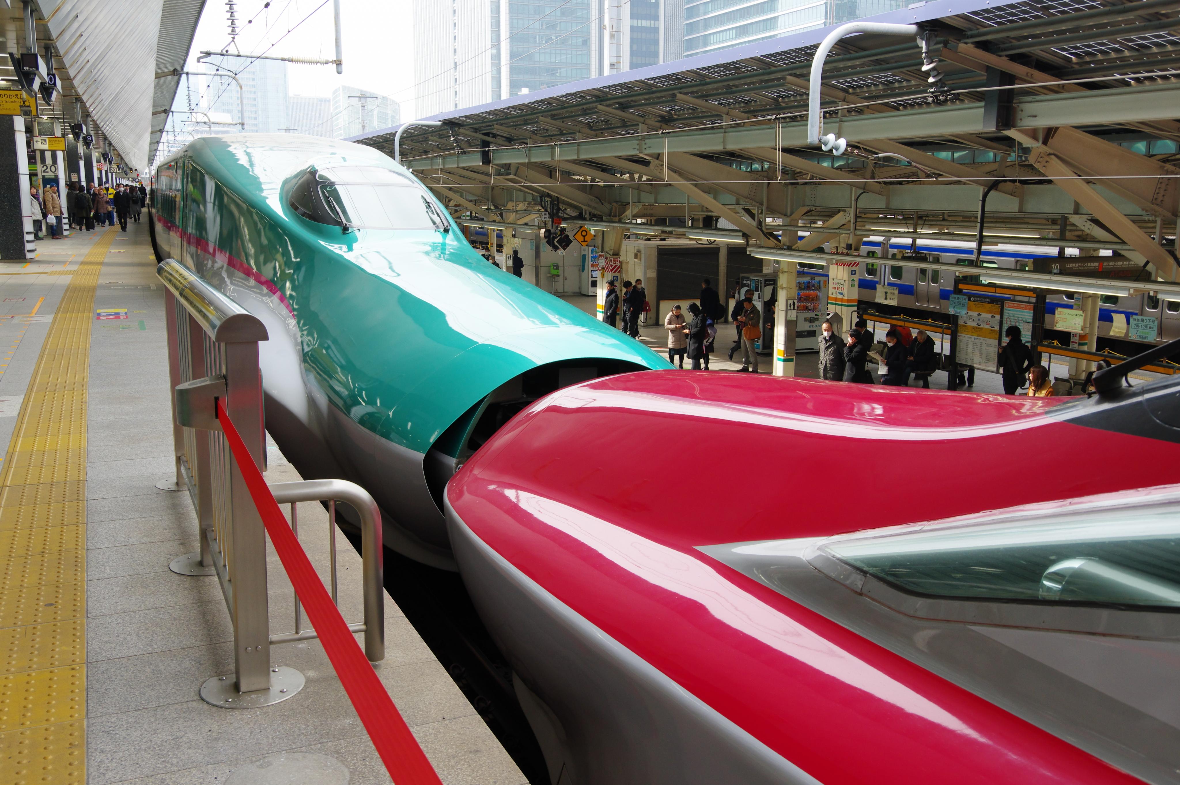 E5系+E6系 はやぶさ+こまち15号 東京駅_190225(1).jpg
