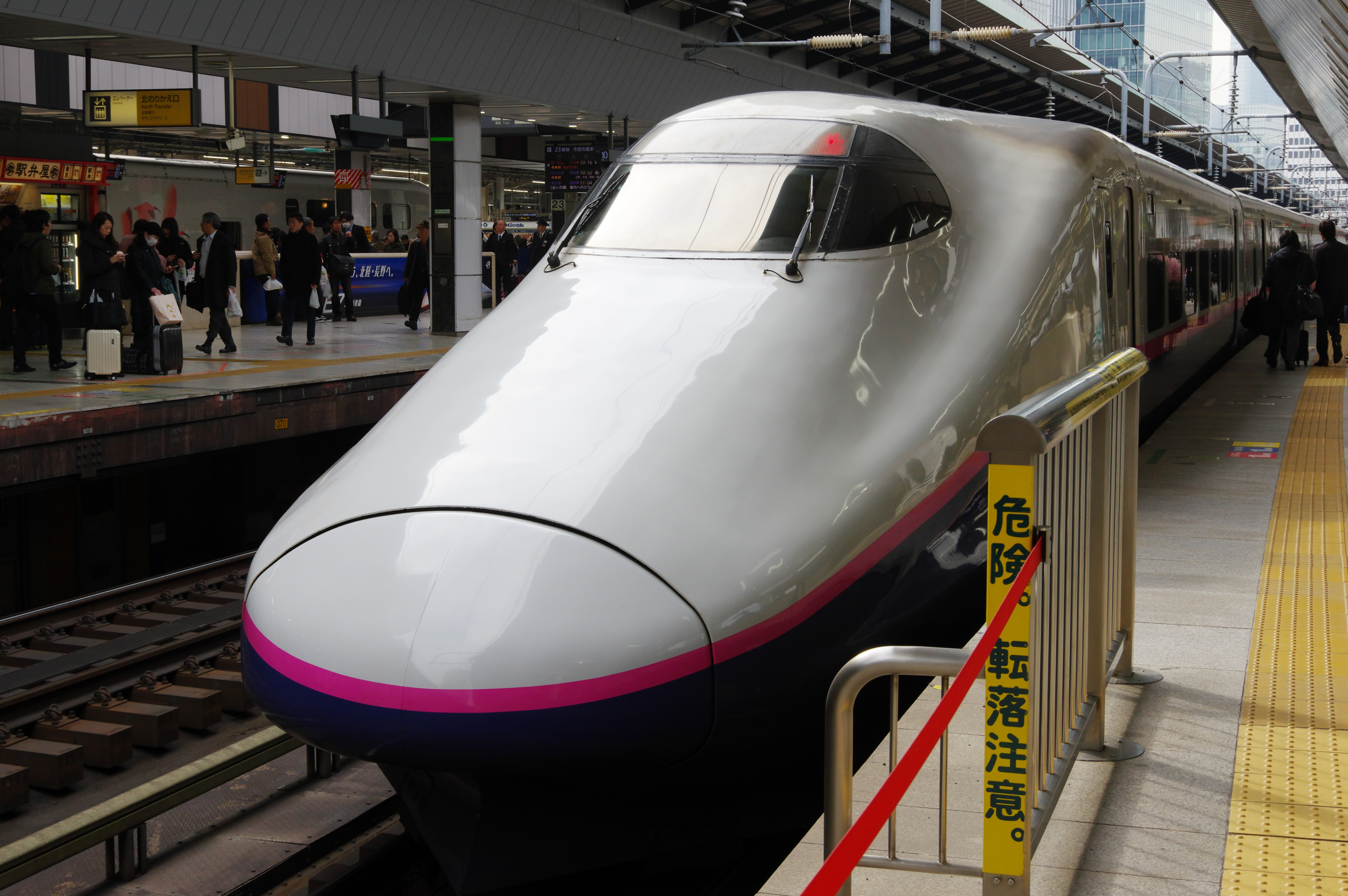 E2系1000番台 やまびこ207号 東京駅 190225.jpg