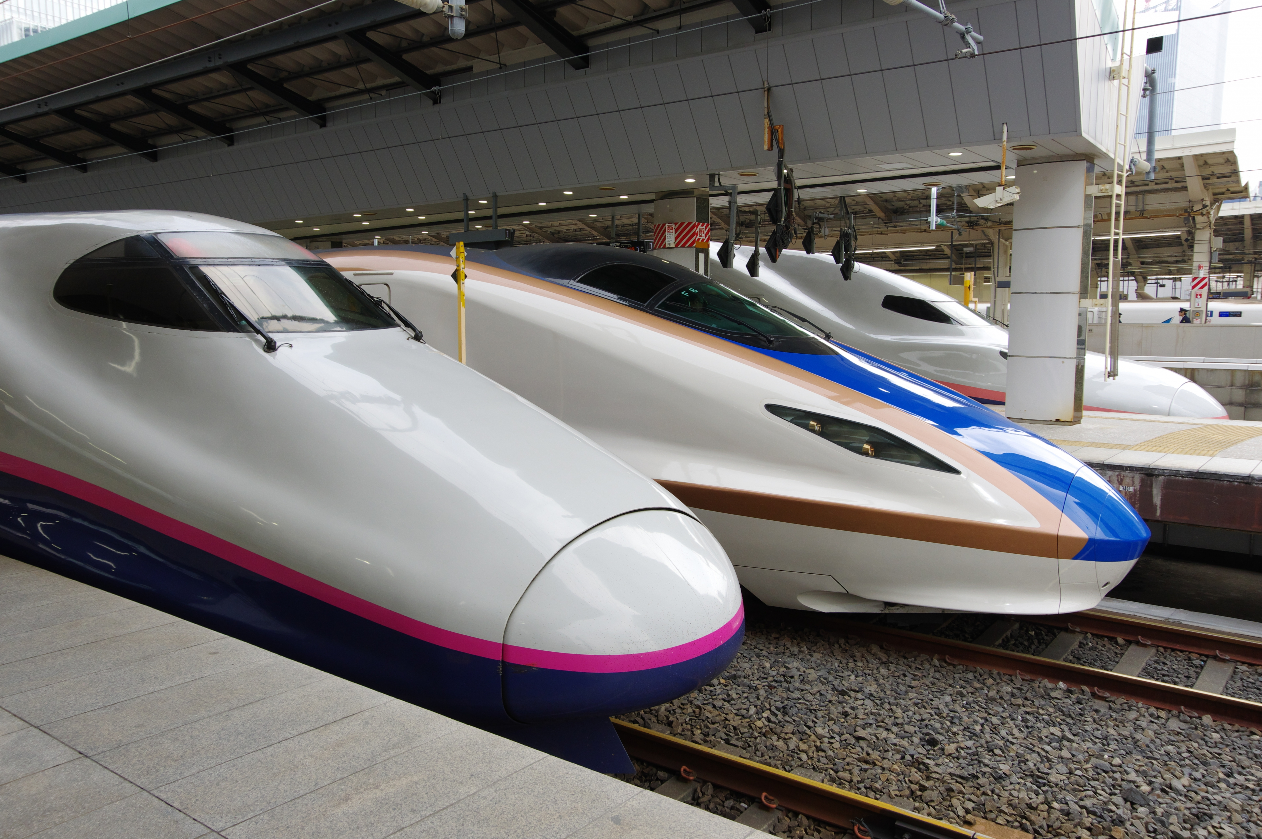 E2系+E7系+E4系 東京駅_190225.jpg