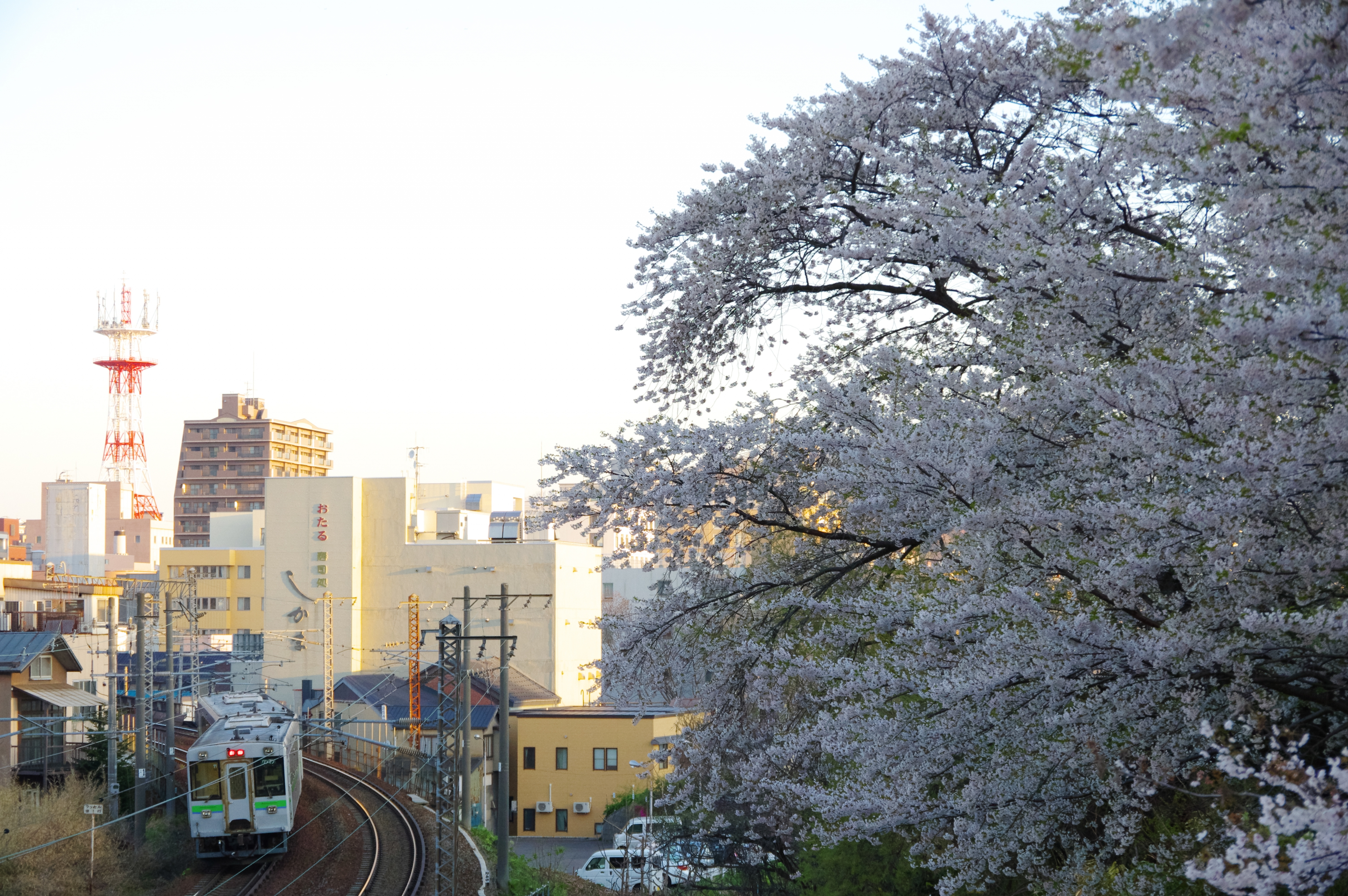 キハ150 回5920D 南小樽−小樽 花園橋_190504.jpg