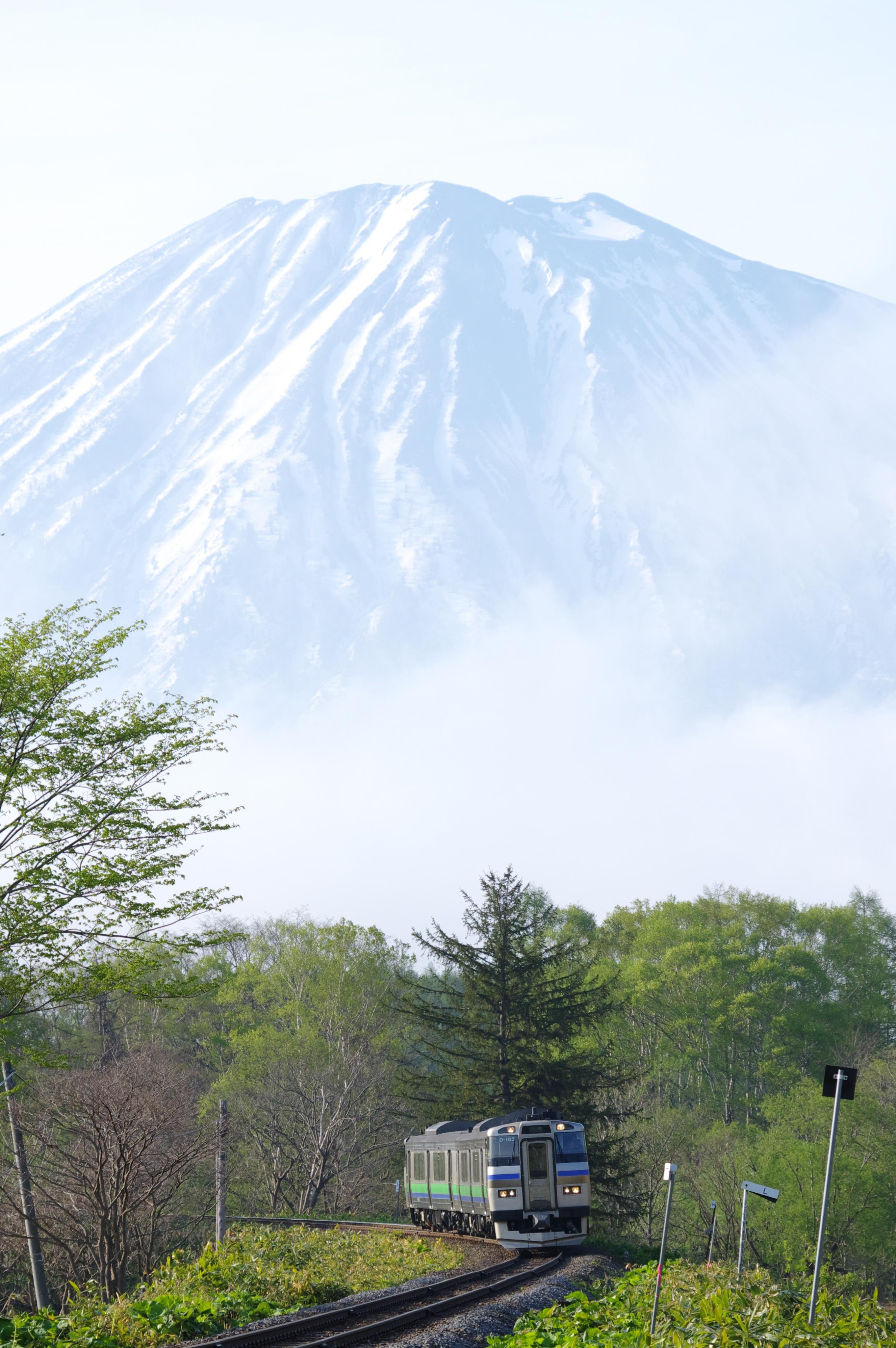 キハ201 963D 倶知安−小沢 北四線踏切_190517.jpg