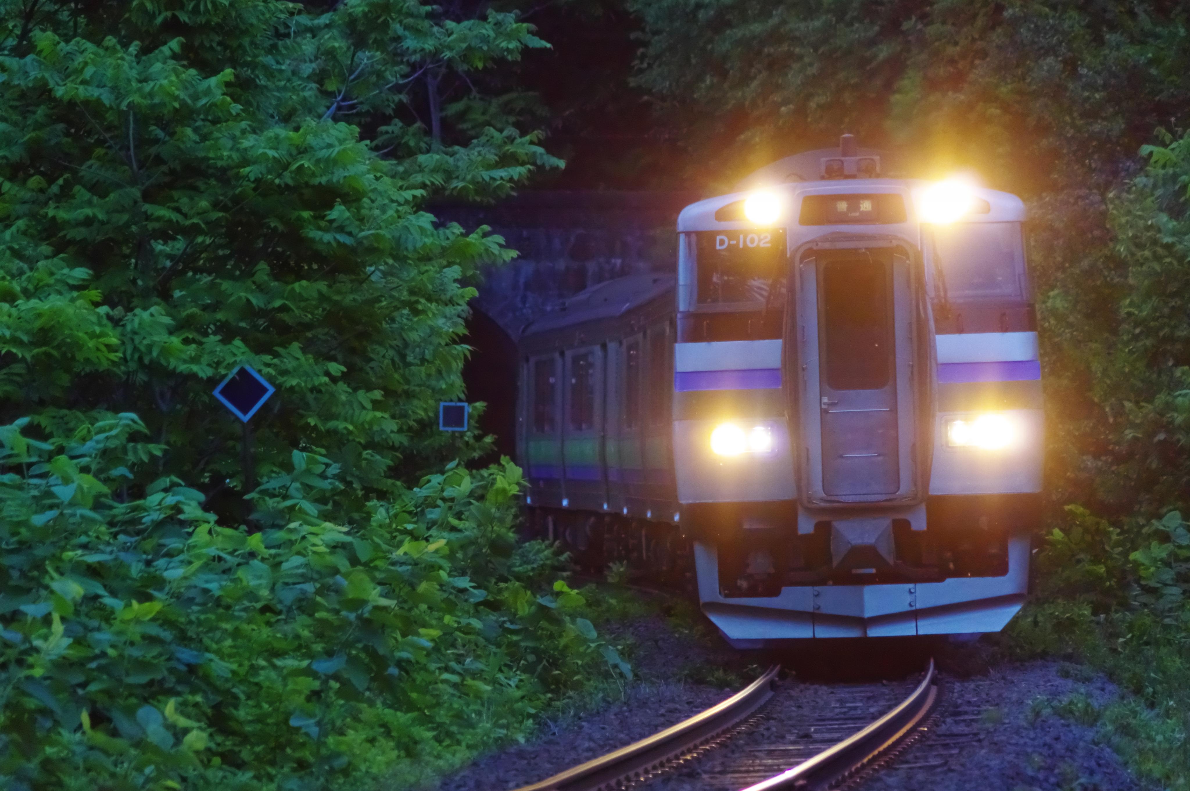 キハ201 3954D 快速ニセコライナー 塩谷−蘭島 桃内トンネル_190612.jpg
