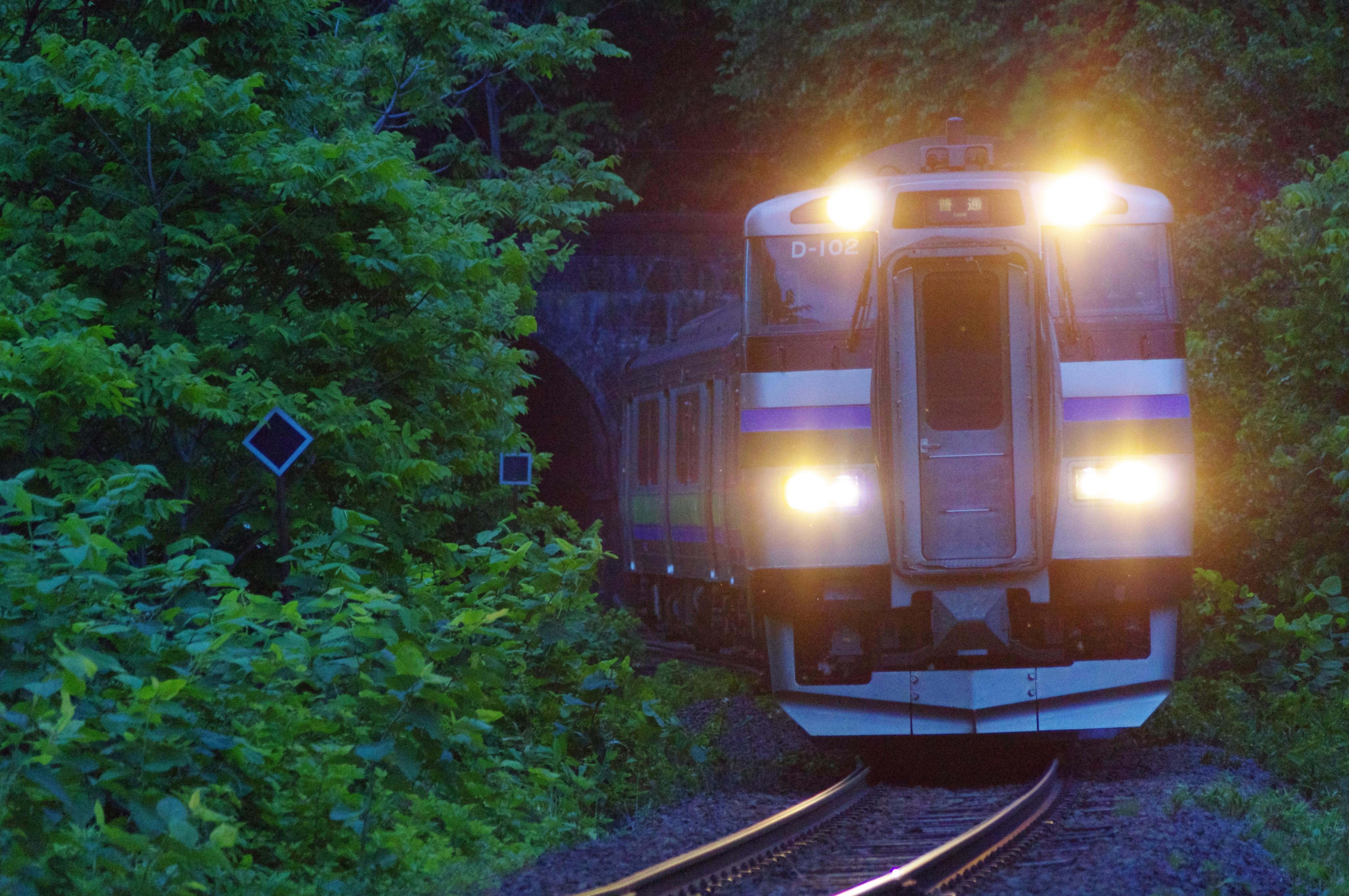 キハ201 3954D 快速ニセコライナー 塩谷−蘭島 桃内トンネル アップ_190612.jpg