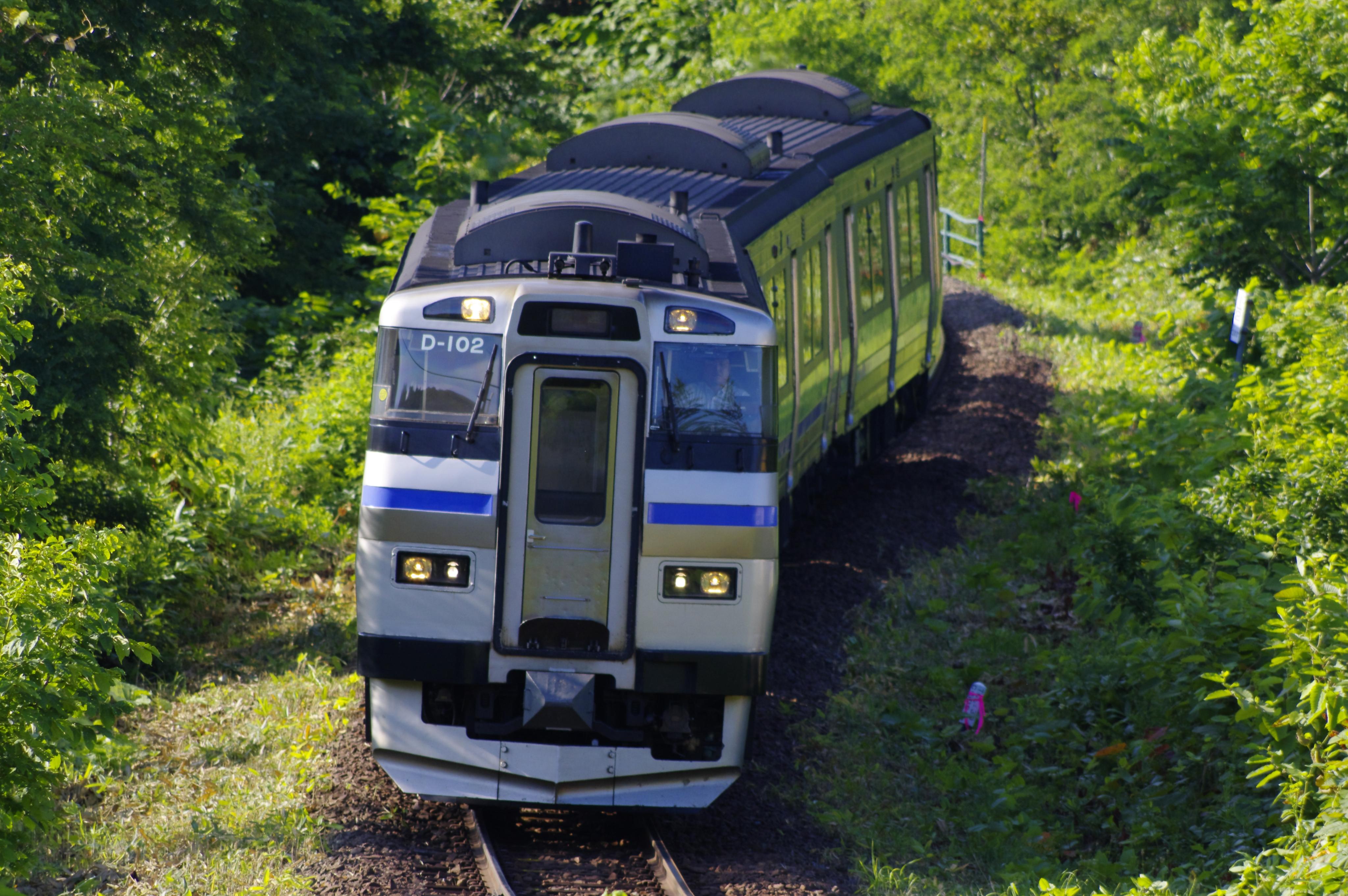キハ201 3925D 快速ニセコライナー 倶知安−小沢 190721.jpg