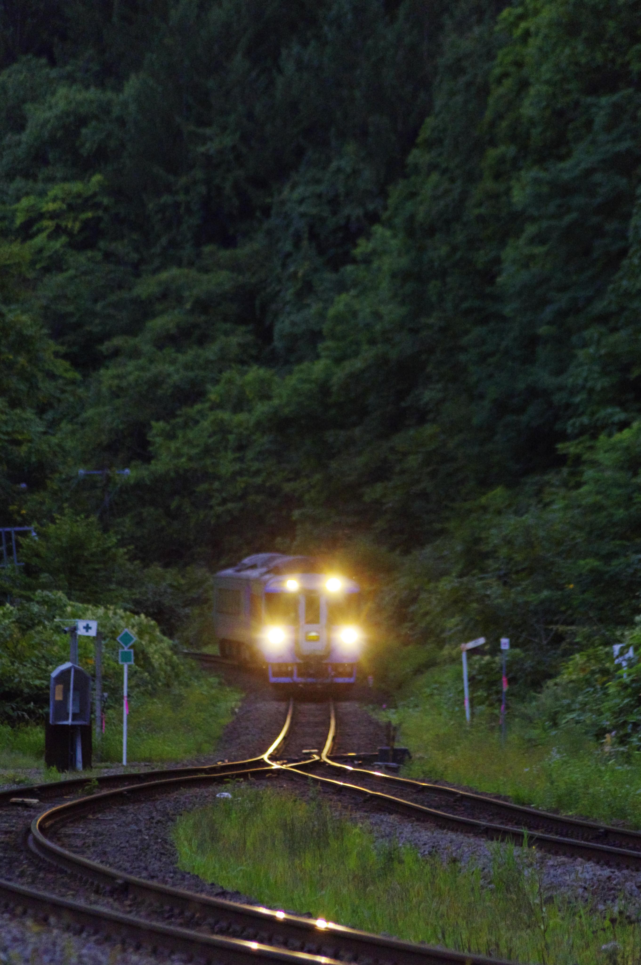 キハ183 特急ニセコ 銀山駅入線 190901.jpg