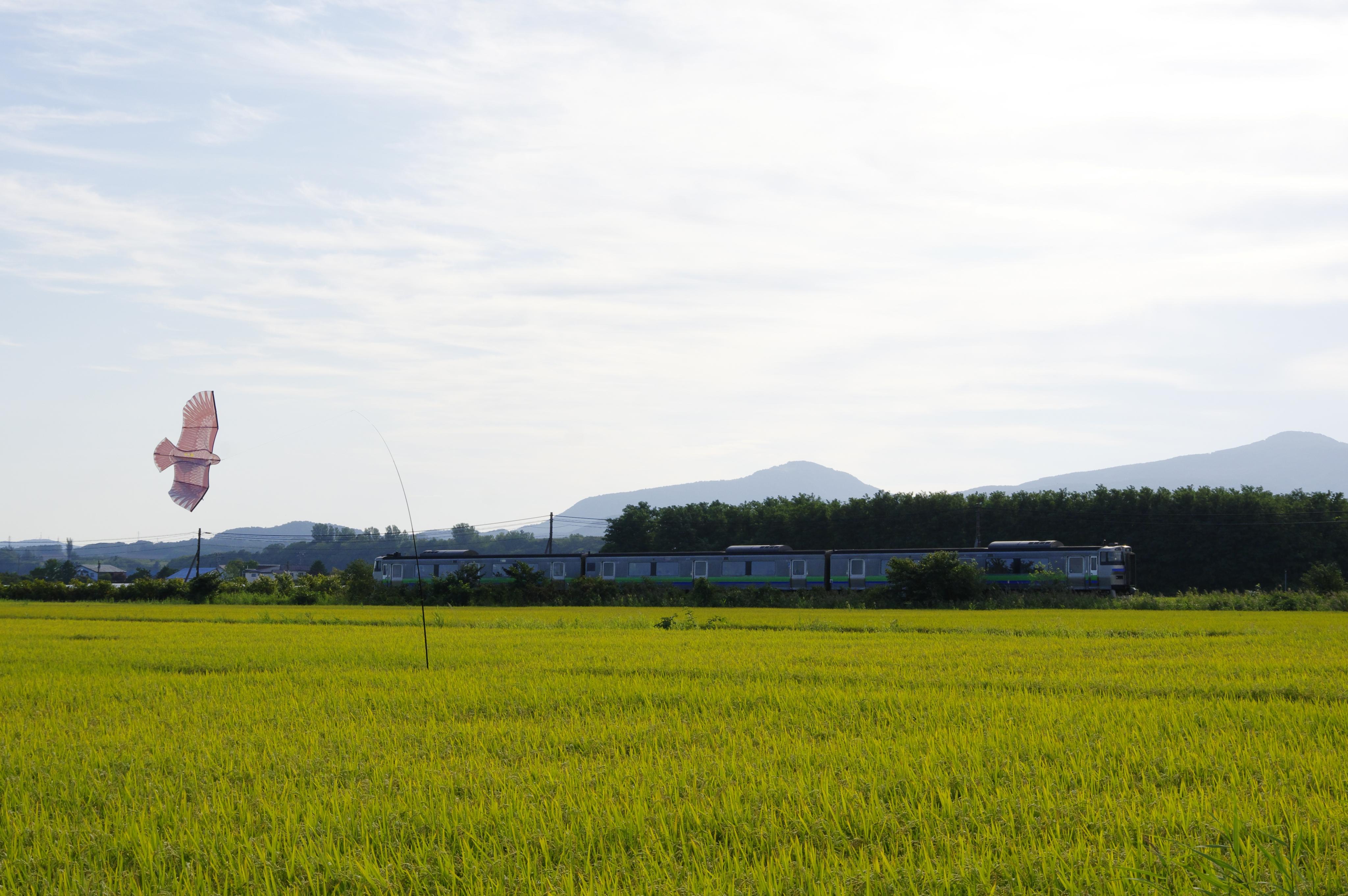 キハ201 963D 仁木−余市 190902-2.jpg