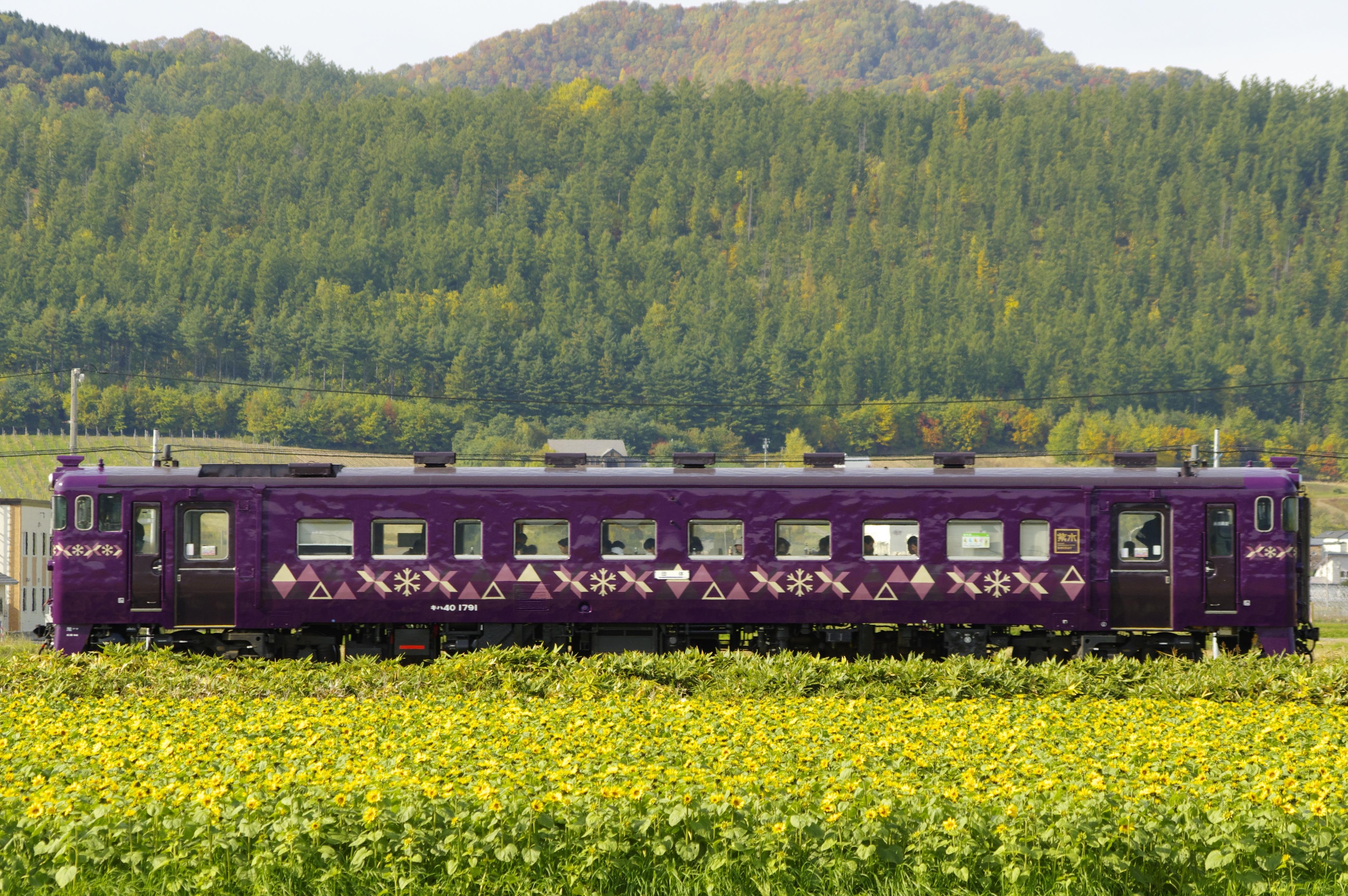 キハ40紫水号 鹿討−中富良野 191014.jpg