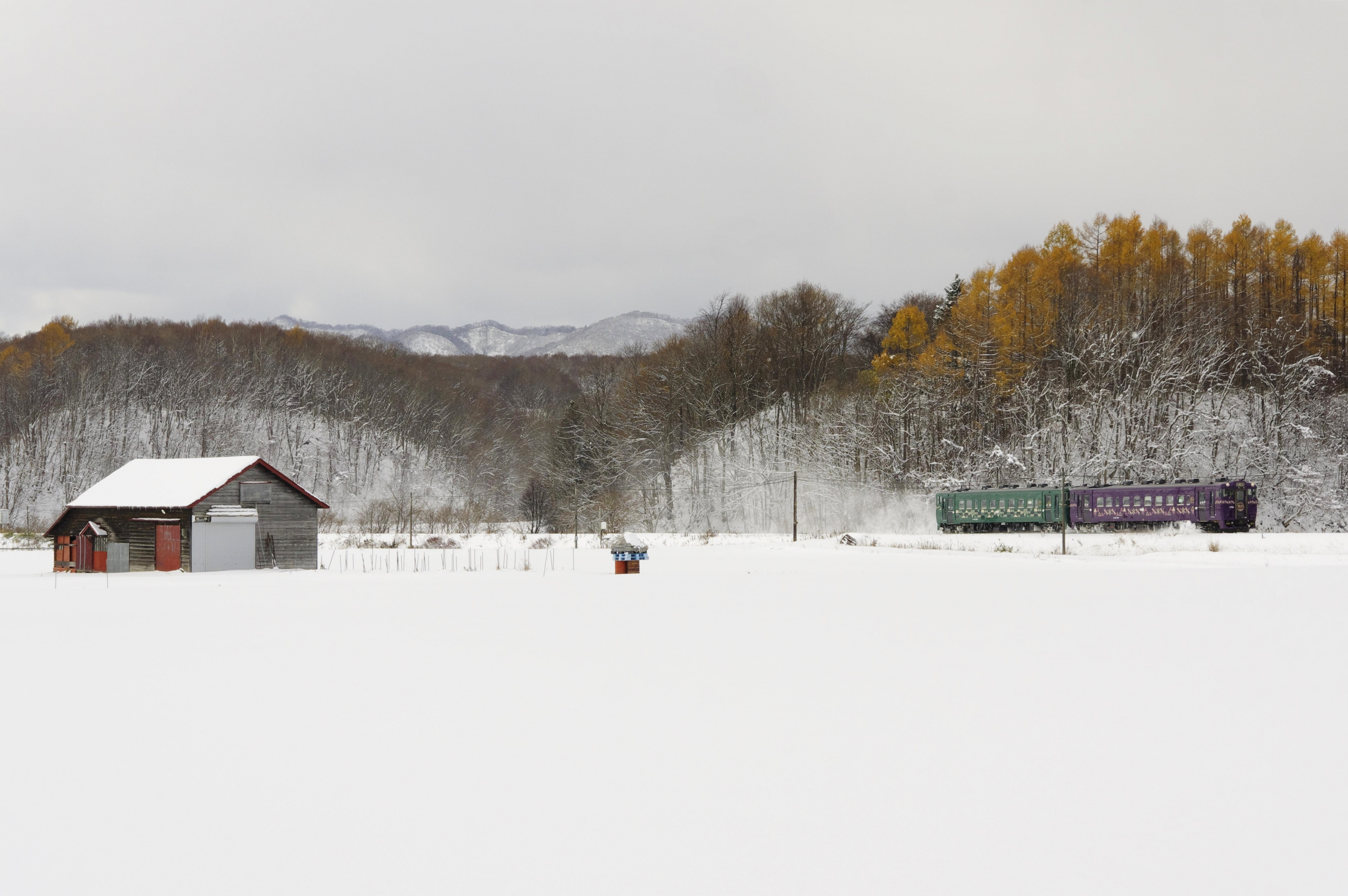 キハ40 紫水山明号 晩生内−札的 191117-1.jpg