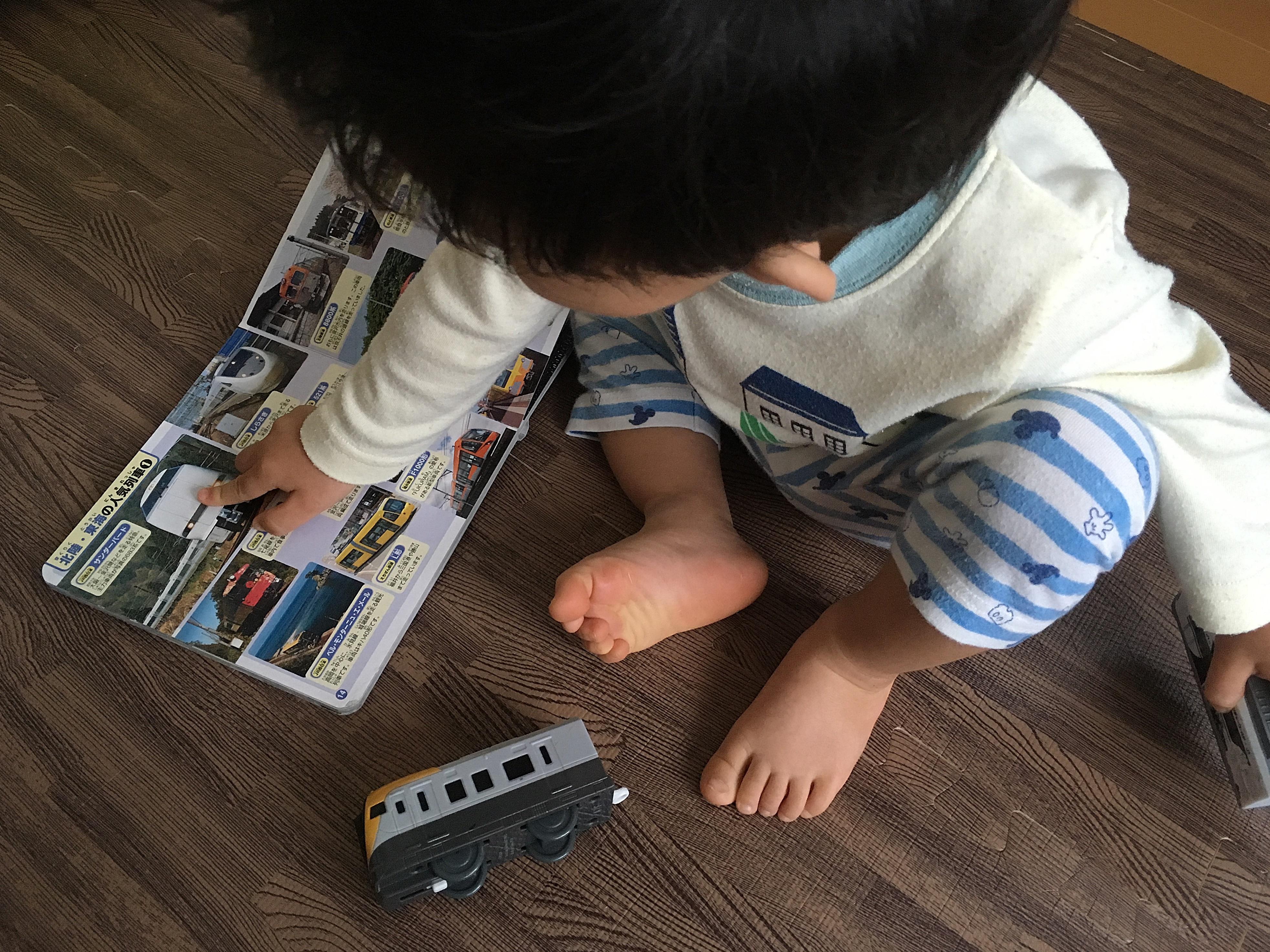 鉄道図鑑を見る愛息.JPG