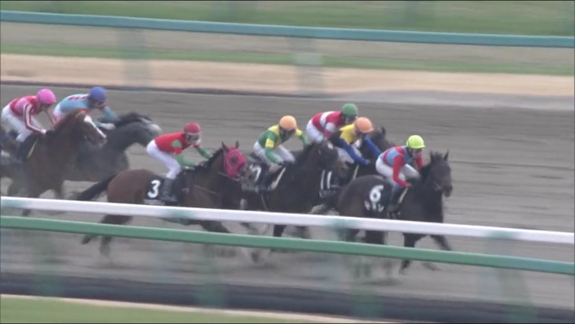 200125 コバルトウィング 朱竹賞 3-4コーナー中間.PNG