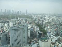 AUBE講習会開催 渋谷東急セルリアンタワー スイートルームの景色
