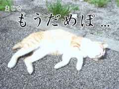 20050918_68315.jpg