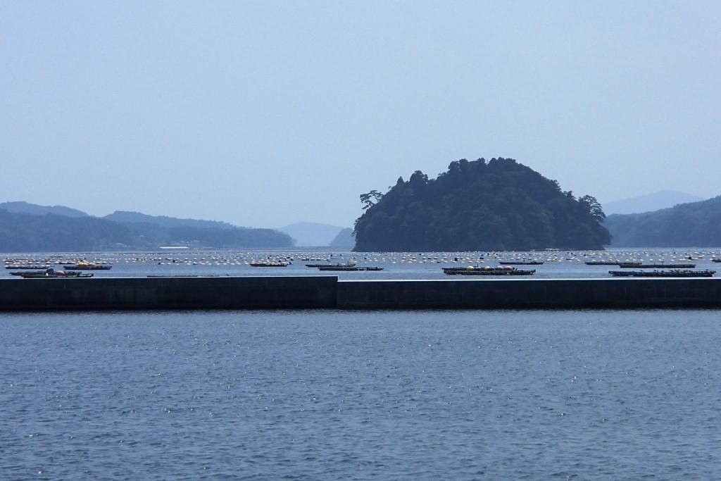 27.山田町大沢漁港.JPG